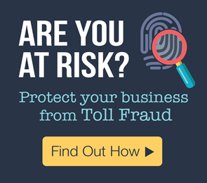 Toll Fraud Prevention for network security. Is your business at risk?